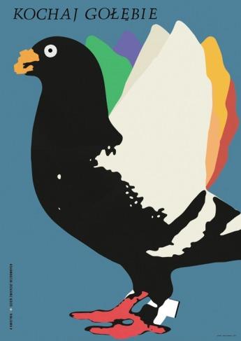kochaj gołębie